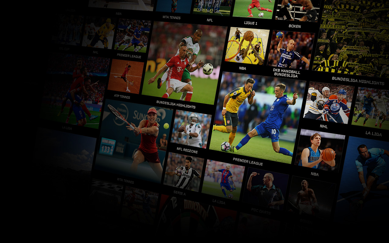 Grid showing sports played in multiple leagues